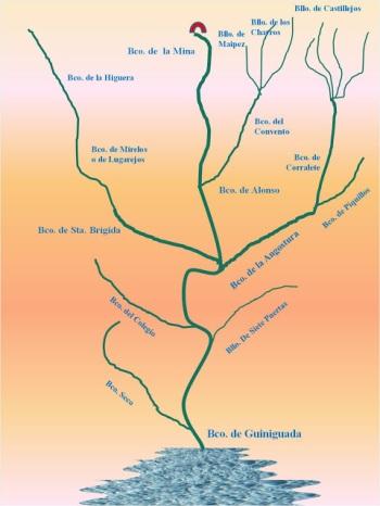 Guiniguada Cuenca del polinimia