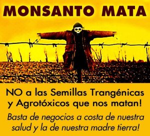 monsanto-agro-tc3b3xico