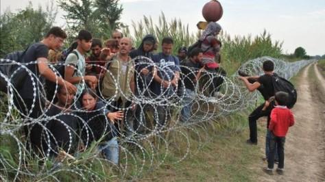 Concertinas en la ciudad de Röszke, en la frontera entre Hungría y Serbia. Miles de refugiados intentan pasar diariamente a través de ellas. Fuente: EFE.