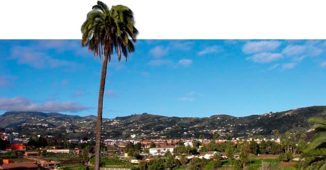 Santa Brígida apoya la implantación del Céntimo Verde en Canarias