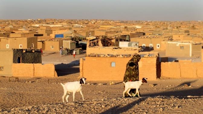 Preparan un viaje solidario con el pueblo saharahui para mayo
