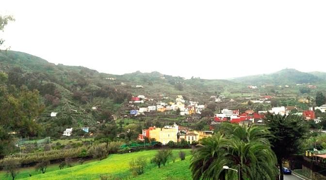 Santa Brígida participa en la 'segunda revolución forestal' repoblando  El Gamonal y Bermejal